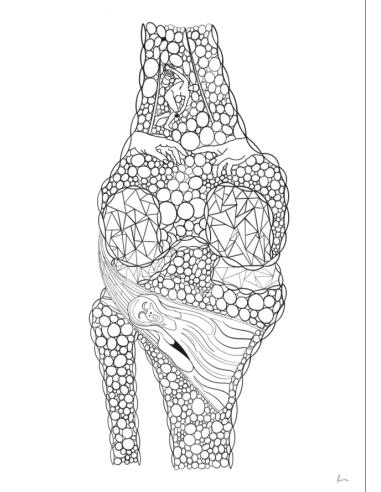 Anatomiczne Fiszki część 2